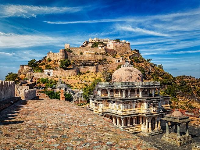 Ashwagandha Erfahrungen - In der ayurvedischen Medizin ganz groß